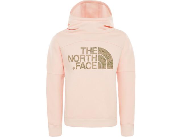 The North Face Drew Peak Hoodie Flickor pink salt